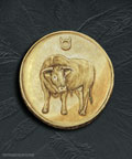 Goldmünze Stier